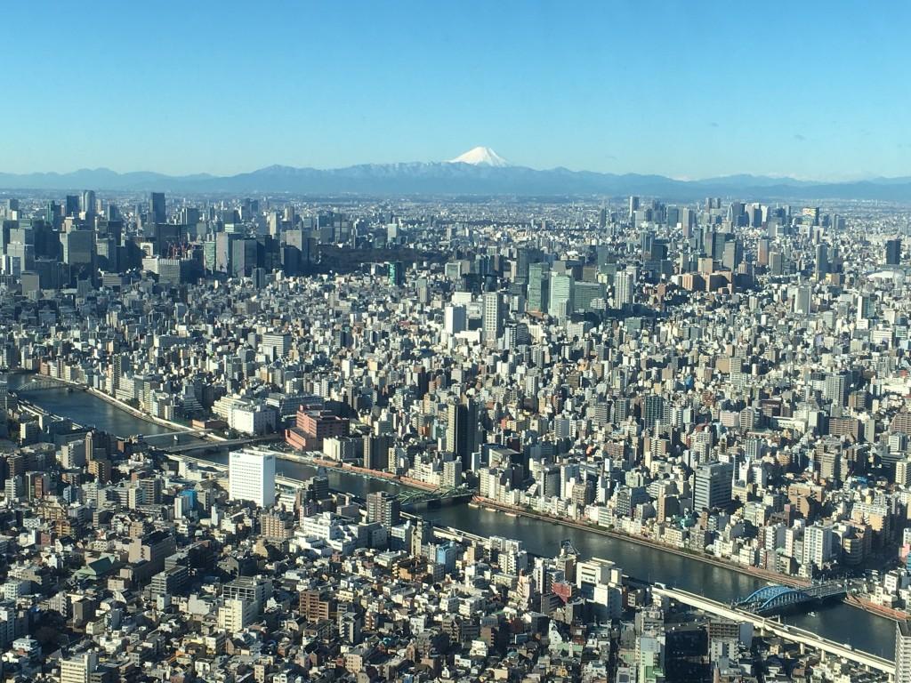富士山fromスカイツリー